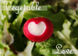 veg-love