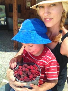 california raspberry picking