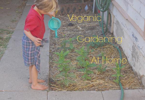 home veganic gardening.jpg