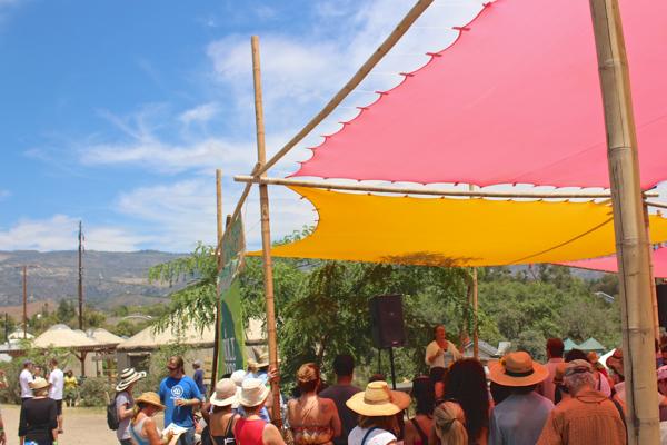 santa barbara fermentation festival 6