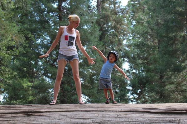 sequoia vegan camping