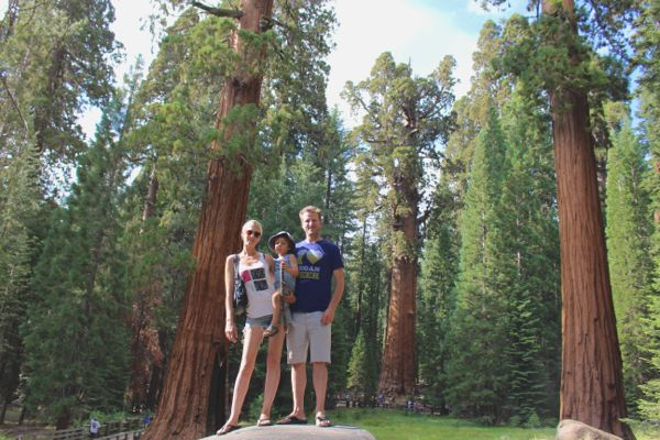 sequoia vegan vacation