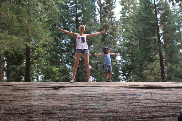 vegan family camping sequoia