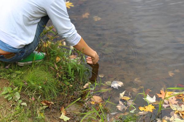letting newt go