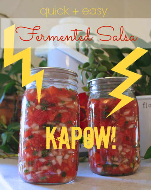 quick easy fermented salsa
