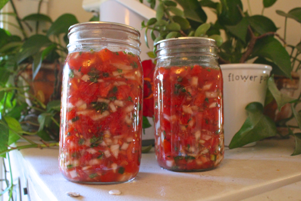 recipe for fermented salsa