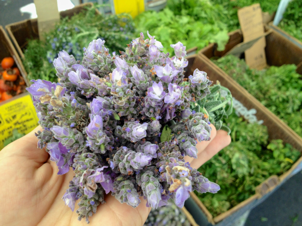 herbs at the farmers market