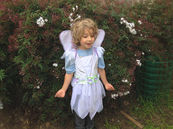 little boy fairy