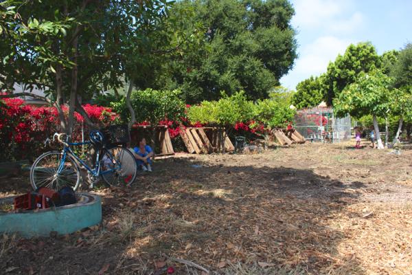 Abandoned Community Garden 1