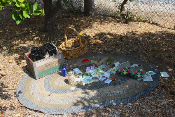 Abandoned Community Garden 3