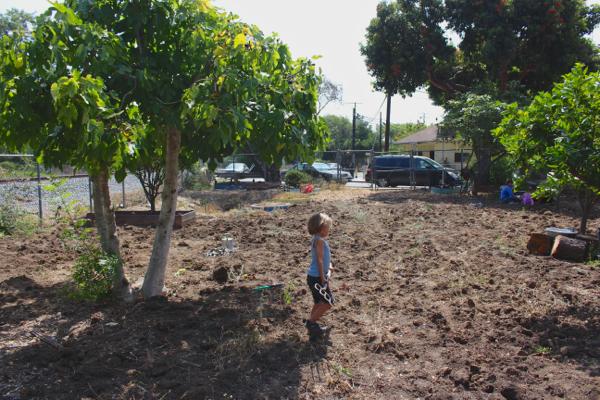 Abandoned Community Garden 4