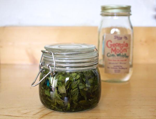 home made stevia