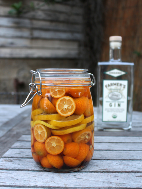 homemade citrus infused gin
